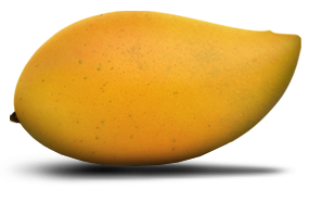 Natural Totapuri Mango